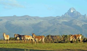 Samburu_National_Reserve